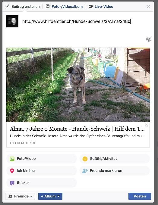 Facebook Like mit Vorschaubild nach Verwendung des Debug Tool