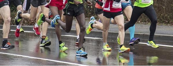Sport bietet einen guten Vergleich zur Suchmaschinenoptimierung